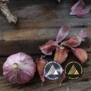 Dunganski Std Purple Stripe Award Winning Garlic