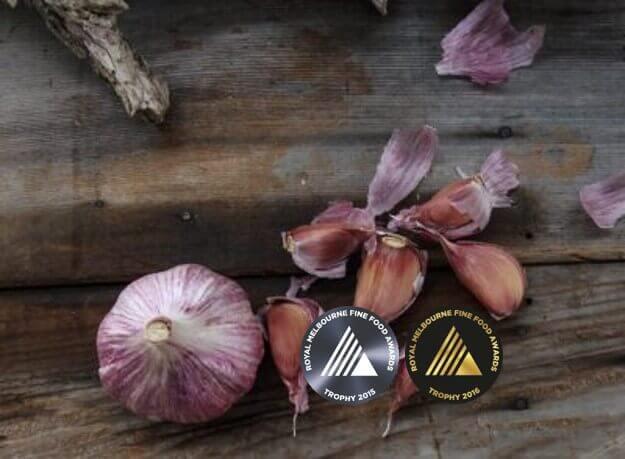 Dunganski Std Purple Stripe Award Winning Garlic