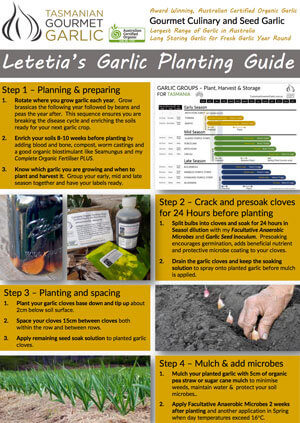 Letetia's Seed Planting Guide