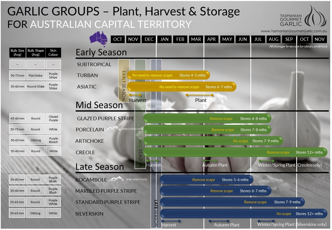 ACT - Harvest & Storage Chart