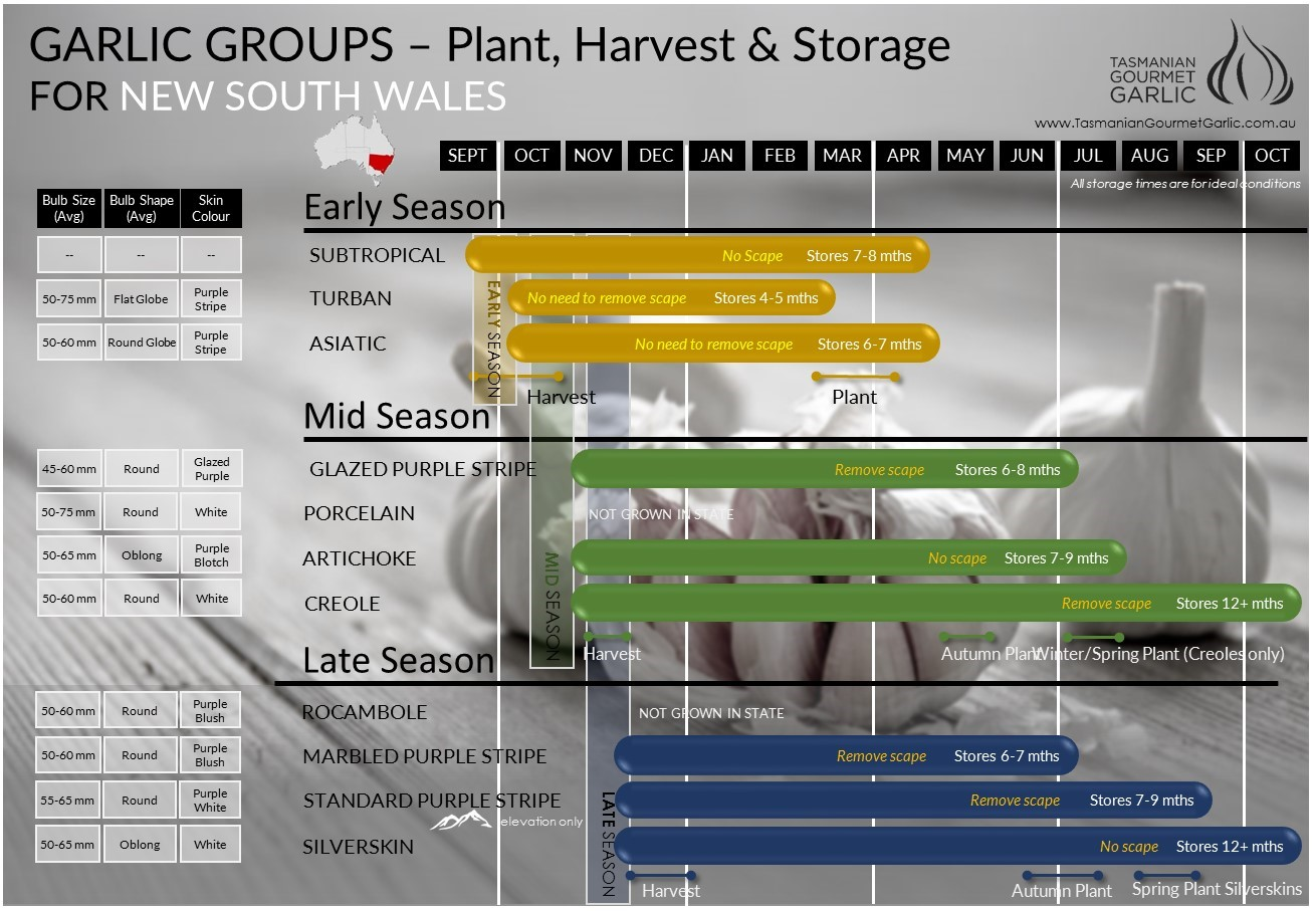 NSW - Harvest & Storage Chart