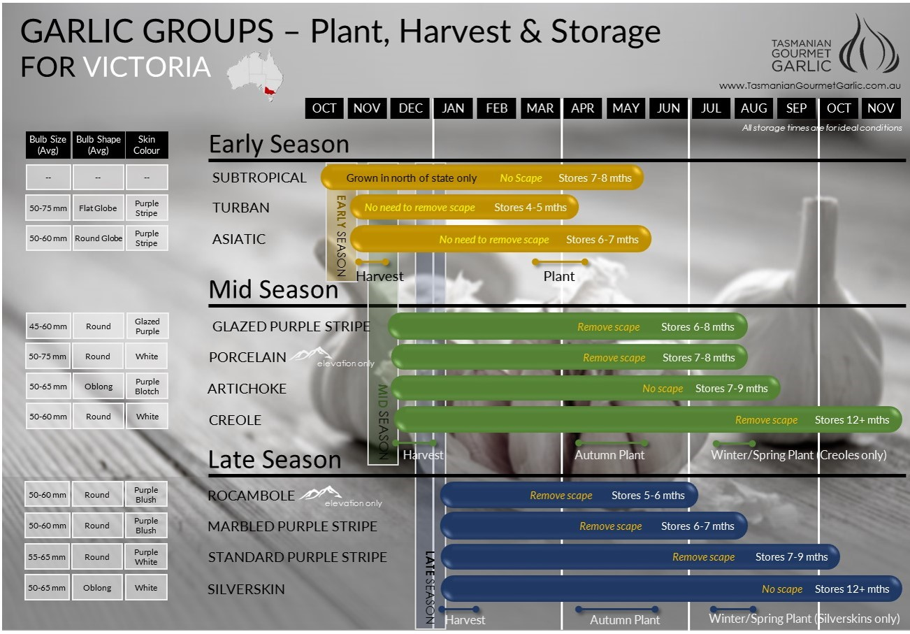 VIC - Harvest Storage Chart
