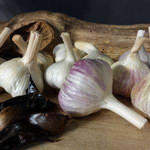 Culinary Pack 1 - Fresh & Black Garlic
