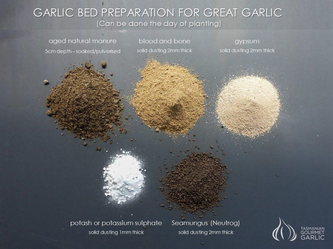 Garlic Bed Natural Fertiisers