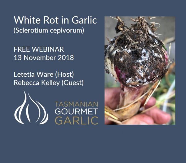 Webinar Recording - White Rot (Sclerotium cepivorum) - Disease Series